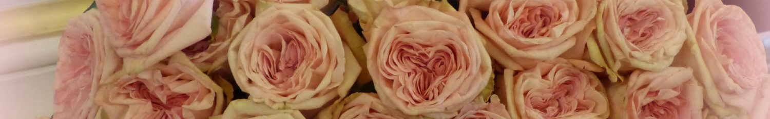 cropped-roses-only-lyon.jpg