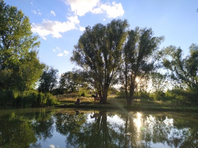 Charly-étang Virieux (3)
